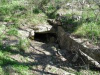 This cave has been known to shelter numerous animals inhabiting the preserve.