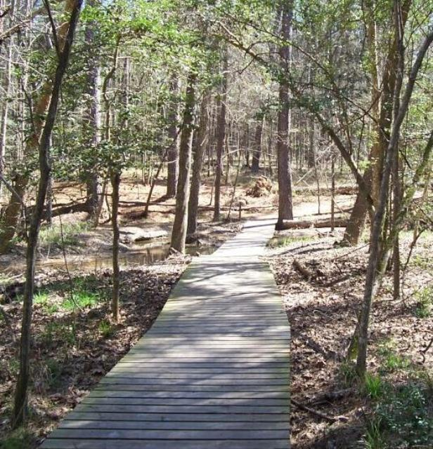 Big Chinquapin Creek boardwalk