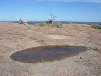 Depressions in the rock eventually host vernal pools (foreground), that eventually turn into small pockets of vegetation (background).