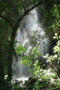 Gorman Falls