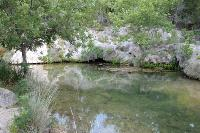 Spicewood Spring
