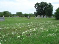 A wide view of the cemetery, showing the flowers in bloom.