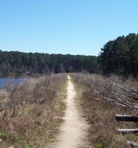 Trail across dam