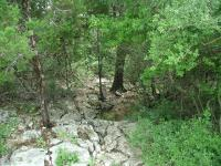 This dry creek bed is the only creek crossing on the main trail.
