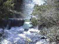 This Is The Small Dam,The Other Picture Is Beaver Damage OOPs