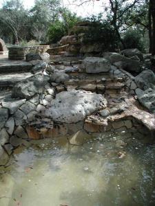 Water Fountain