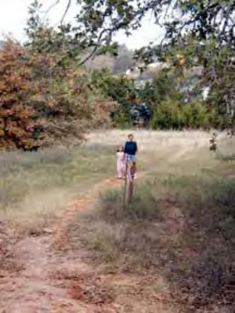 LBJ Grasslands