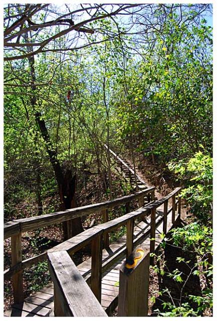 Homestead Trail Bridge