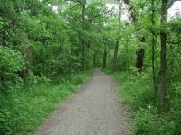 The Onion Creek Trail can be enjoyed by hikers of all abilities.