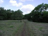 Much of the trail is along old jeep tracks and generally easy to navigate.