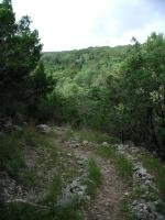 The trail descends from the rim into the canyon below on the northern half of the park. Some small spots can be steep.