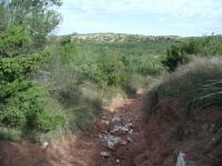 At some points the trail descends and ascends in rapidly eroding troughs leading down to streambeds.