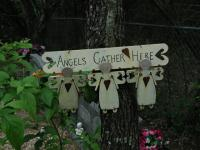 Angel Crossing