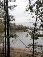 View of the Lake -  Atlanta State Park