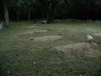 A large number of graves had crude markers, but names and no certain indication that there ever was one indicated.