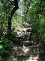 The natural surface trails can provide some physical challenges. Parts are rocky and steep.