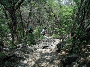Rougher Trail