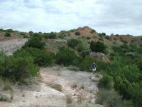 Austin Explorer poses amongst the brush and rock and ledges along the canyon rim.