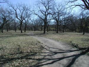 Unpaved Trail