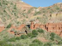 A strange collection of hoodoos could be seen from the trail.