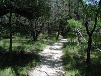 Interpretive Trail