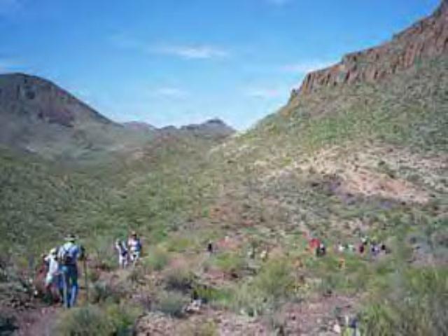 Mule Ears Trail - Big Bend