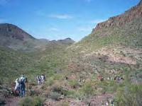 Mule Ears Trail - Big Bend