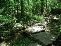 The trails on the eastern side of the park are shaded. There's even a nice creek crossing.