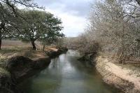 Yegua Creek
