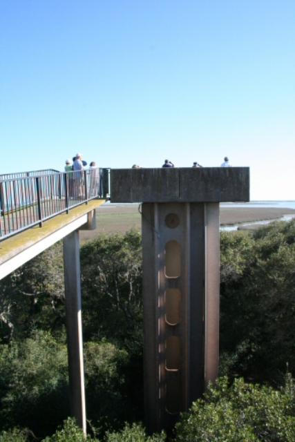 Wildlife Observation Point