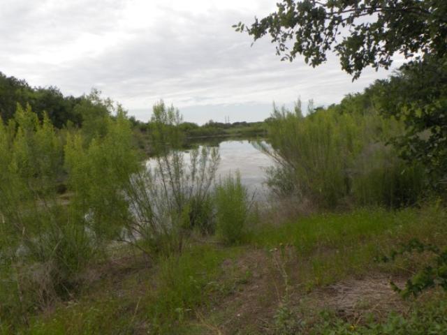 first pond