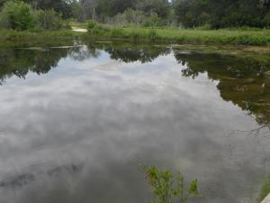 second pond