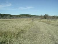 The trails at Commons Ford vary from grassland here to Cedar covered hills farther inland.