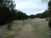 Trail View