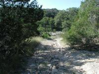 A view from the trail, looking back down to the Pedernales River.