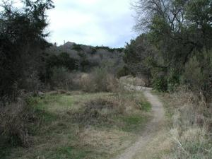 Another Trail View