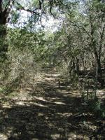 The trail in the back half of the preserve is more rocky, but still easy to navigate.