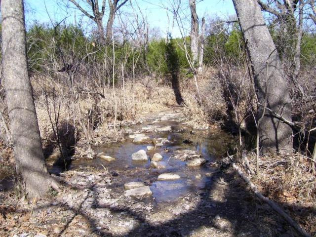 stepping stones on trail between Jim Hogg and Russell Parks