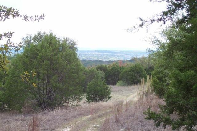 Orange Trail views